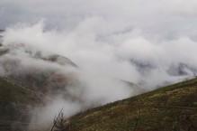 Nevoeiro e as cores de outono